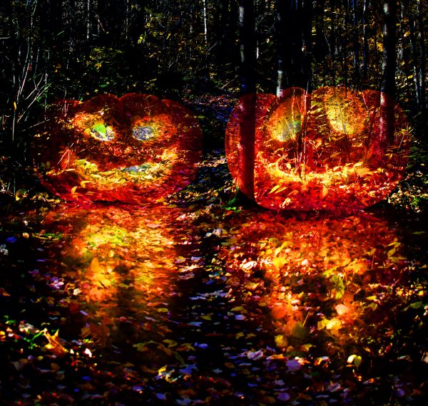 Halloween Scary Wood 3